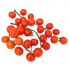 Vyšniniai pomidorai ant šakelių, iš Graikijos ūkio, 0.5 kg